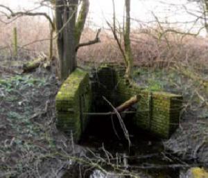 Een half overwoekerd sluisje herinnert aan de tijd dat het gebied nog landbouwkundig werd gebruikt. Na een hoogwater kon overtollig water weer via het sluisje worden geloosd.