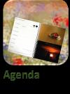 Agenda1.1
