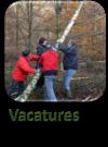 Vacatures1.1